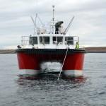 Orca III - 16.5 metre catamaran
